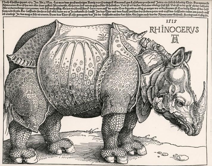 Альбрехт Дюрер. Носорог. Гравюра на дереве. 1515. Британский музей, Лондон.