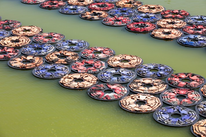 Каждое кольцо композиции «F. Лотос» состоит из 5-ти спасательных жилетов.